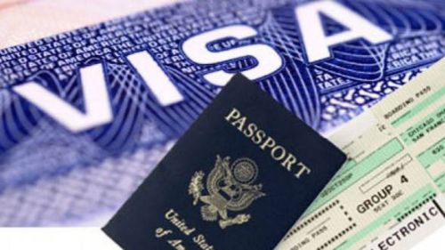 problema-vizelor