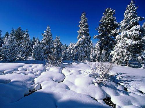 vremea iarna