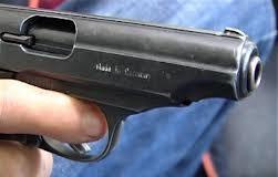 Tâlhar tunisian capturat cu focuri de armă la Timişoara