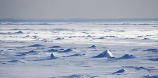 Expediție la Polul Sud în scop caritabil