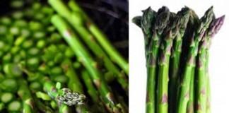 Sparanghelul, legumă roială