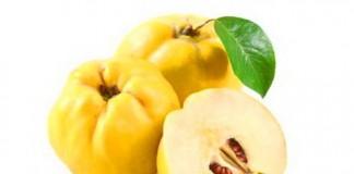 Beneficiile gutuii