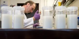 Din cele 1.062 probe de lapte recoltate, 7 conțin aflatoxină