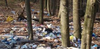 Pestre trei tone de gunoi, adunate dintr-o pădure din Târgu Jiu