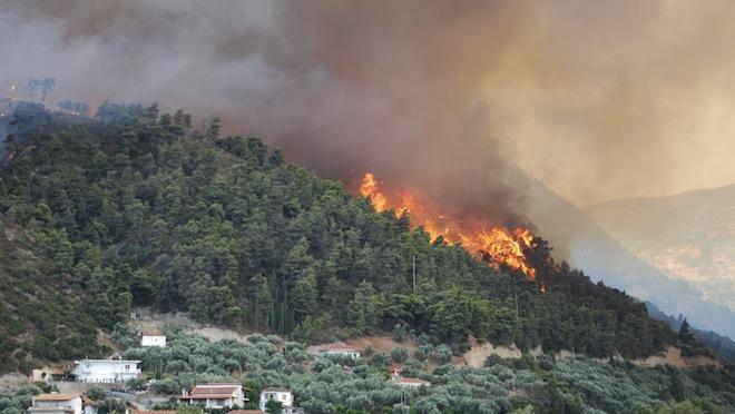 Suceava: Incendiu puternic într-o pădure din apropierea Rezervaţiei Călimani