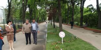 Neculai Onțanu a făcut obsesie pentru panseluțe, plătind zeci de milioane de euro pentru ele