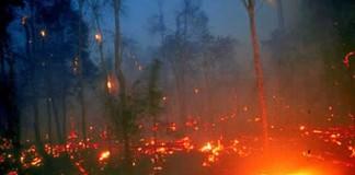 Incendii uriașe de pădure în Sumatra. Singapore şi Malaysia, invadate de fum