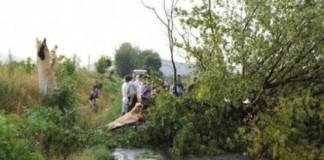 Brăila: Victimele unui accident rutier au câştigat în instanţă procesul cu Compania Naţională de Autostrăzi