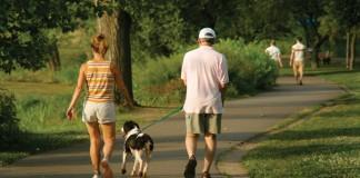 Bucureștenii care nu își declară câinii, amendați cu 3.000 lei începând cu ianuarie 2014