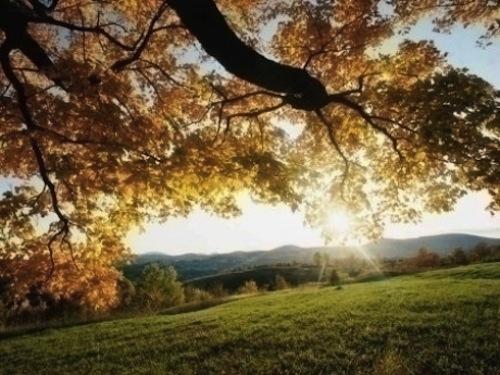 VREMEA în weekend: Prognoza meteo pentru sâmbătă şi duminică
