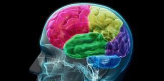 Ce se întâmplă în creier după moarte?