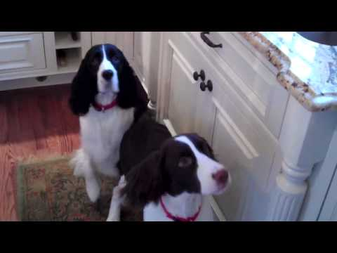 Hope and Rosey