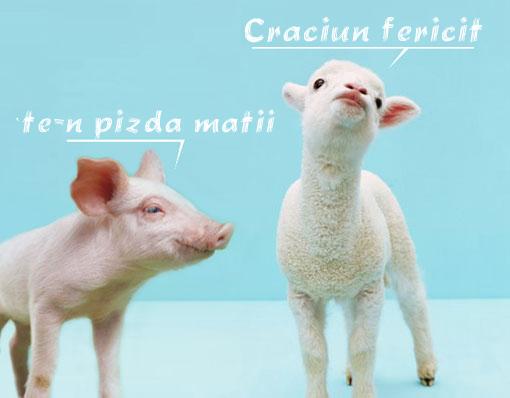 porc_miel_craciun