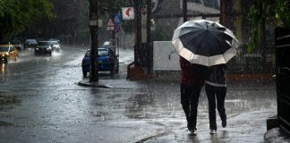 cod galben, ploi, anm, 25 de judete