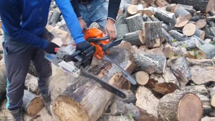 hoti lemn, muntii rodnei, arme, jandarmi montani