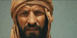 iulian ghergut, al qaida, mali, roman rapit