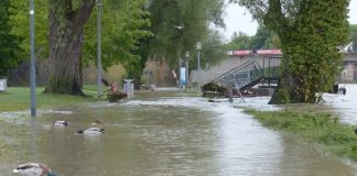 igsu, vreme rea, inundatii, pagube,