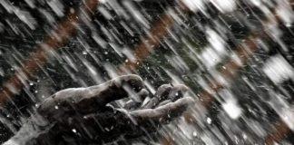 temperaturi scazute, anm, vreme rece, prognoza weekend