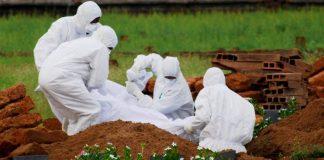 india, virus nipah, victime, encefalita mortala