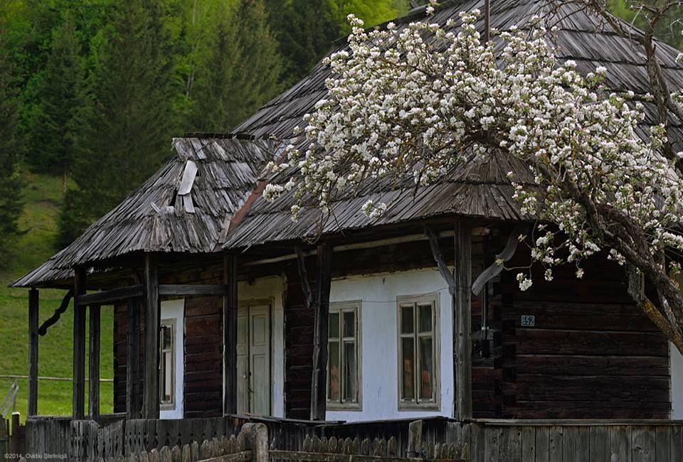 Bucovina, Romania (by Ovidiu Stefeliga)